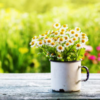 Home efficiency checklist for spring